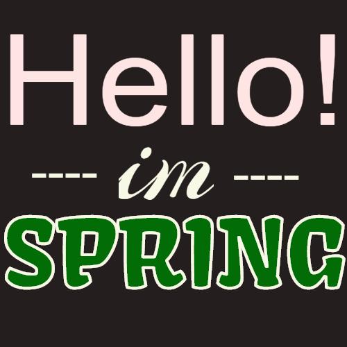 hello im spring